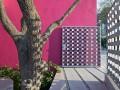 色彩成了这座住宅的主角,点亮每片墙体每个空间