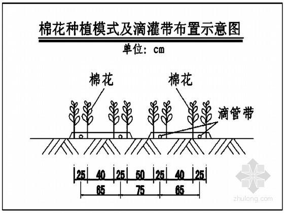 [新疆]2万亩高效节水建设项目初步设计报告(低压管道灌结合滴灌)