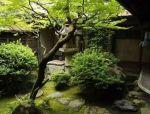 日式园林有几种?