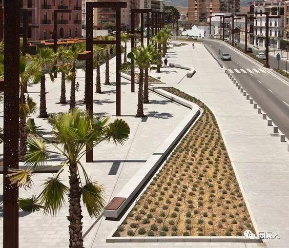 城市干道植物配置,实用干货不得不看!_26