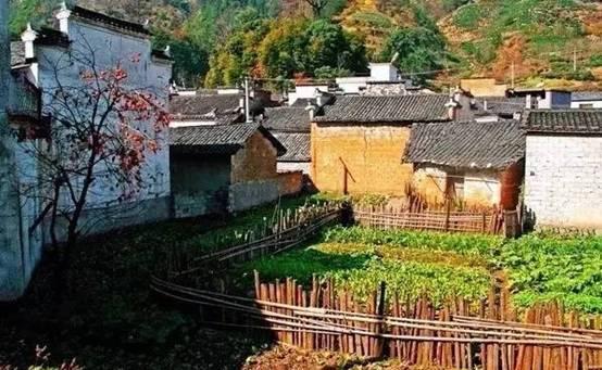 乡村庭院这么美,你有什么理由不喜欢!_9