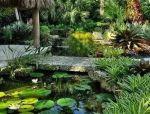 在庭院里,做一个小桥,为生活增添一份浪漫