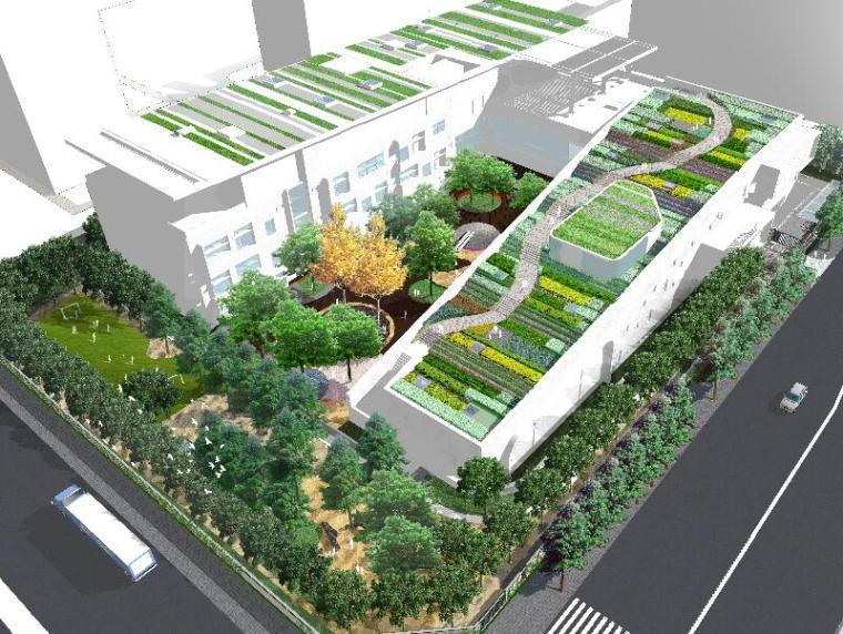 [北京]北京乐成国际幼儿园景观方案规划设计(PPT+50页)