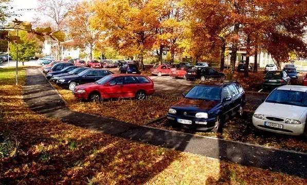 停车场也玩生态_16
