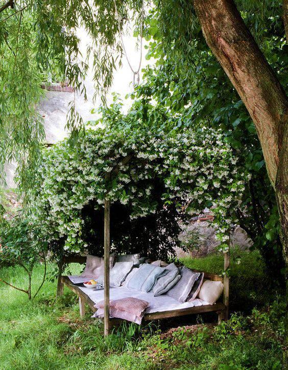想要一个小院子,花开花落一辈子_35
