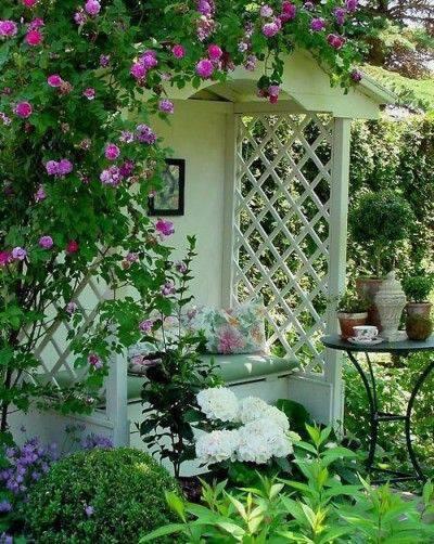 想要一个小院子,花开花落一辈子_37