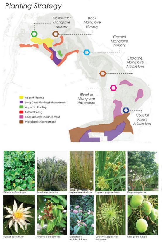 案例分享|新加坡双溪布洛湿地公园景观设计_8