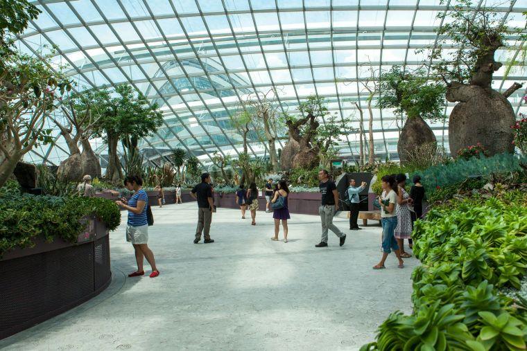 新加坡世界级超级温室花园-4