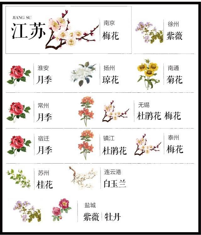 204个城市·史上最全中国各城市市花_12