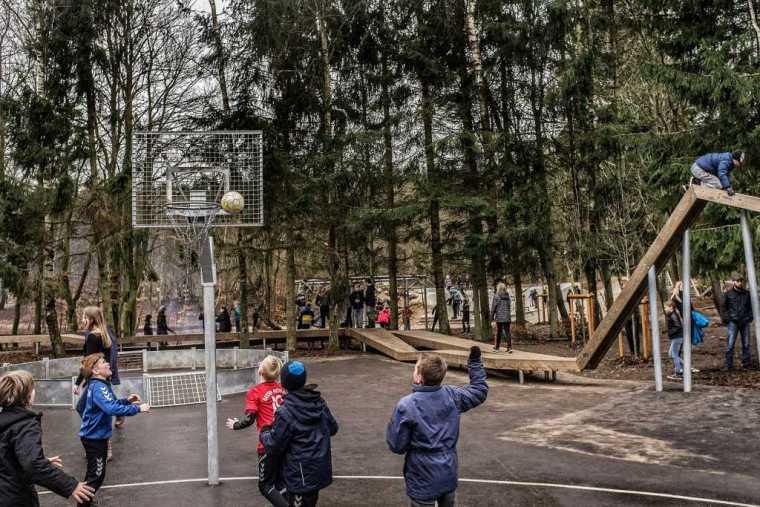 丹麦校园里的神奇树林景观-3