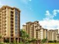 [郑州]房地产项目规划设计方案66页