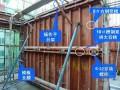 [陕西]住宅楼工程剪力墙大钢模施工技术总结