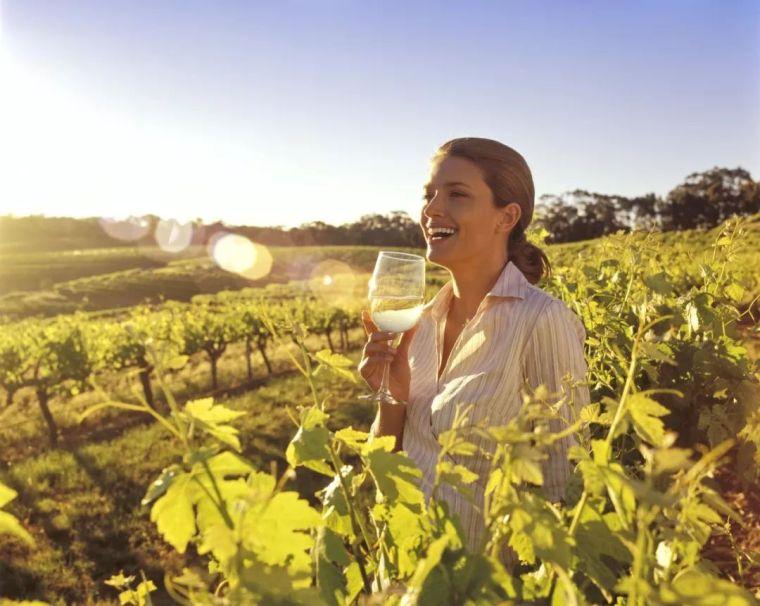 这个澳洲的田园综合体,不只有美酒,还有……