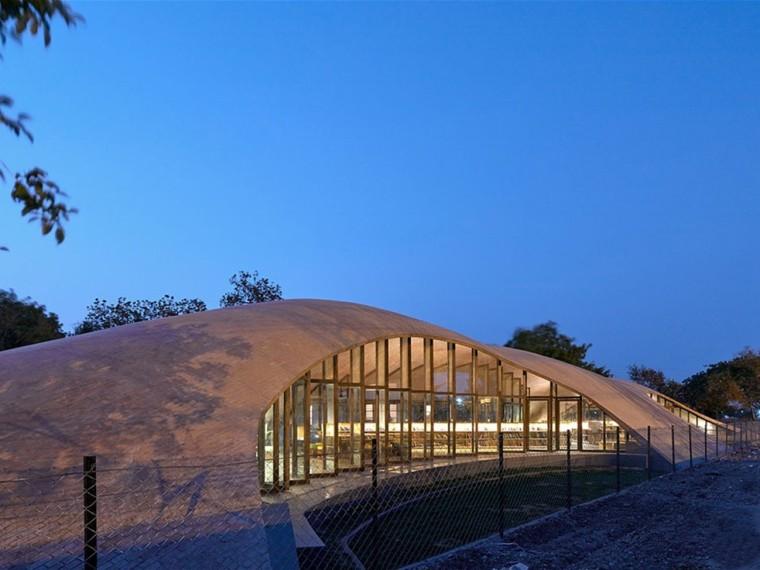 印度的起伏砖瓦屋顶图书馆