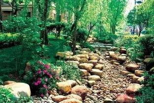 干货 景观地被植物的选择方式_19