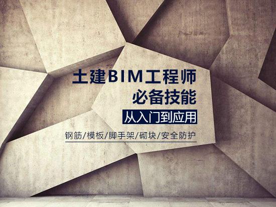 土建BIM工程师必备技能从入门到应用/钢筋/模板/脚手架/砌块/安全防护