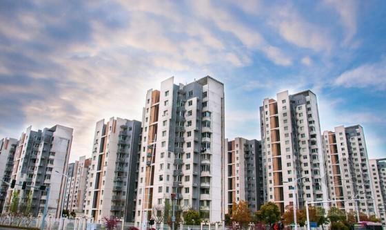 [河北]房地产开发公司工程部项目管理制度及规程(编制详细)