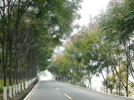 德江县326国道绕城公路某段(投标)施工组织设计