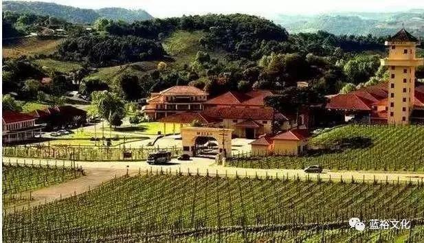 葡萄酒喷泉竟是葡萄酒小镇的宣传方法