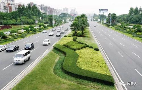城市干道植物配置,实用干货不得不看!_5