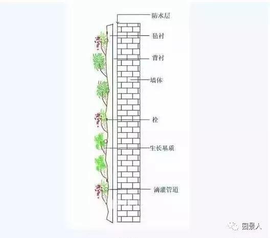 垂直绿化·会呼吸的墙壁_24