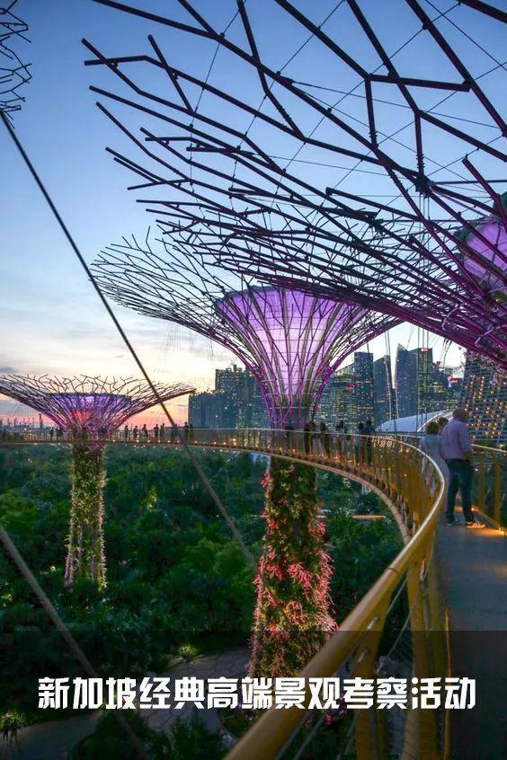 新加坡经典高端景观考察活动
