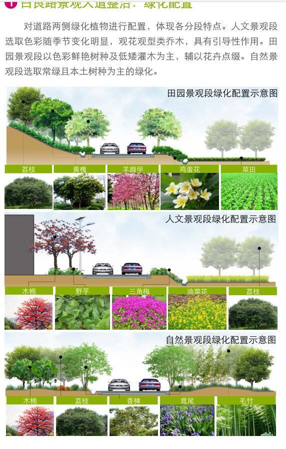 [广东]美丽乡村示范点某镇村庄详细规划景观方案设计PDF(313页)-绿化配置
