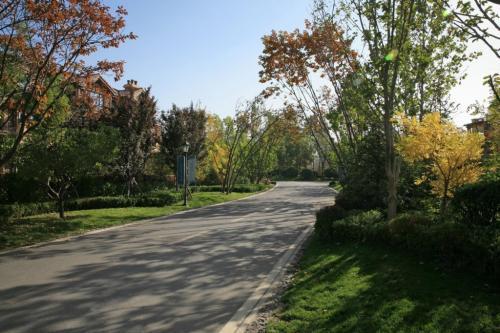 市政道路改造工程监理实施细则
