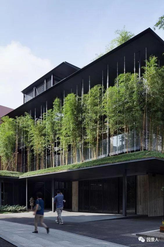 垂直绿化·会呼吸的墙壁_37