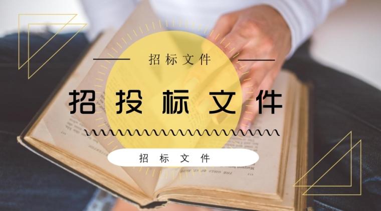 [四川]水电站的综合治理及场内交通工程施工招标文件435页