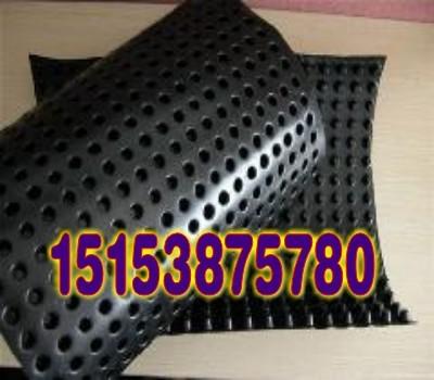 周口塑料滤水板;周口地下车库排水板;蓄排水板