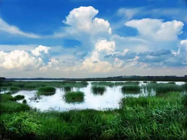 《湿地保护修复制度方案》已经落实
