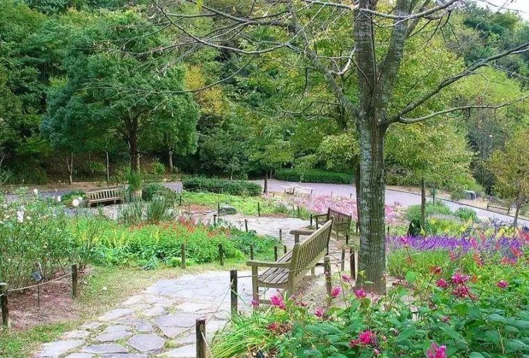 康复花园的设计竟有这些讲究