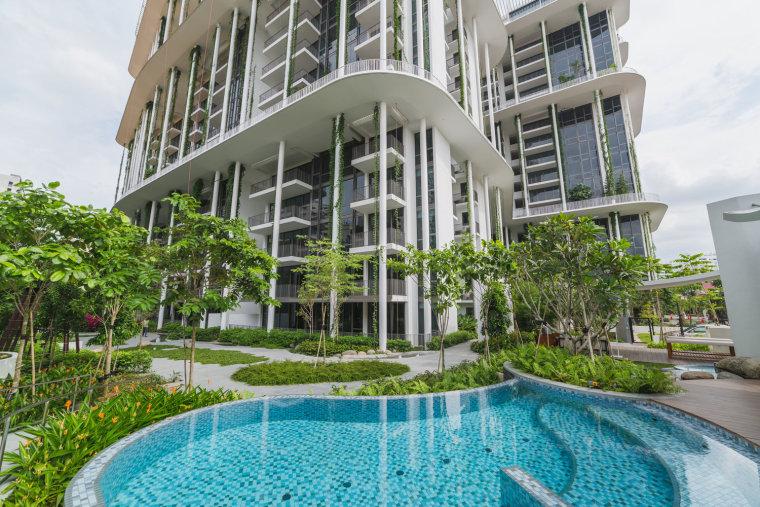 新加坡Tembusu雨林住宅-2