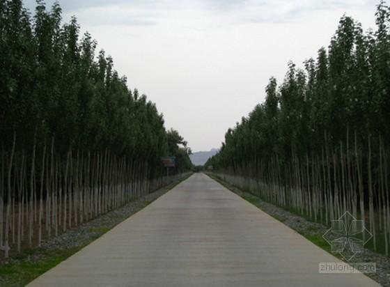 [河南]2015年农田道路建设工程投标文件(技术标)