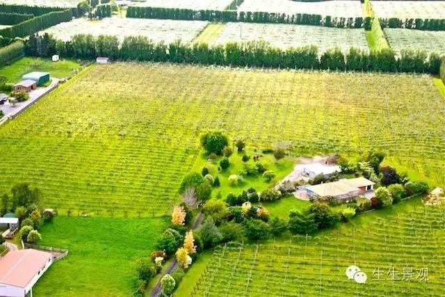 农业景观的意义_67