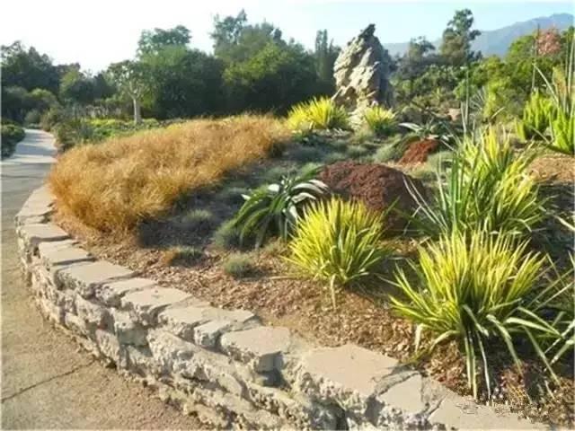 处理坡地景观高逼格方法,种草!种草!!_42
