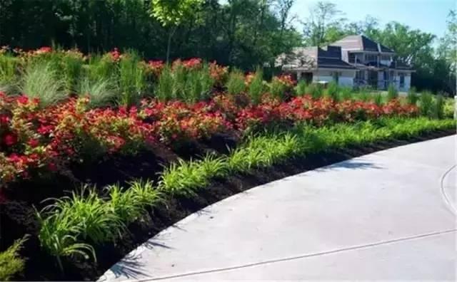 处理坡地景观高逼格方法,种草!种草!!_30