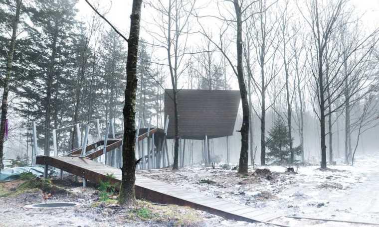 丹麦校园里的神奇树林景观-20