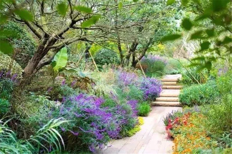 植物造景·实用景观设计来一波_19