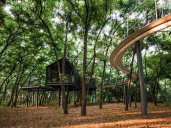 天津蓝光雍锦半岛的的森林乐园