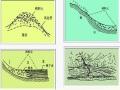 岩土工程地质分级与分类ppt版(共74页)