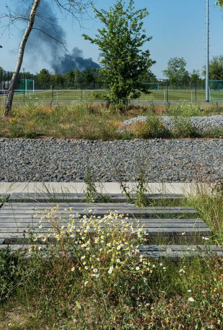 德国后工业场地改造的市民休闲运动空间-mooool-A24-Landschaft-Leisure-sport-kohlelager9