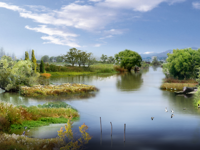 自然生态公园湿地景观效果图PSD源文件