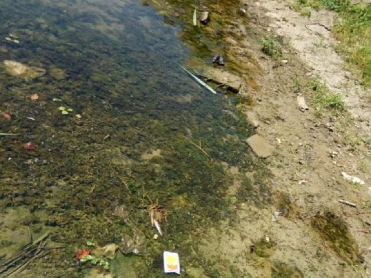 河道水环境综合整治工程施工组织设计