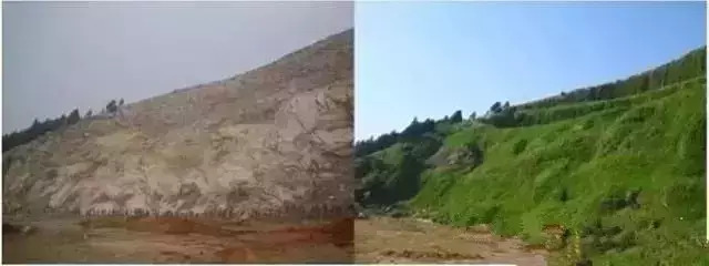 常见基坑支护及生态边坡支护形式特点详解分析!_4