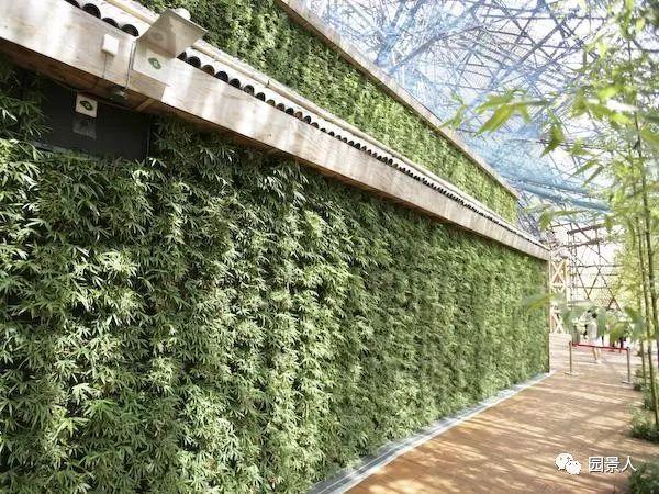 垂直绿化·会呼吸的墙壁_23