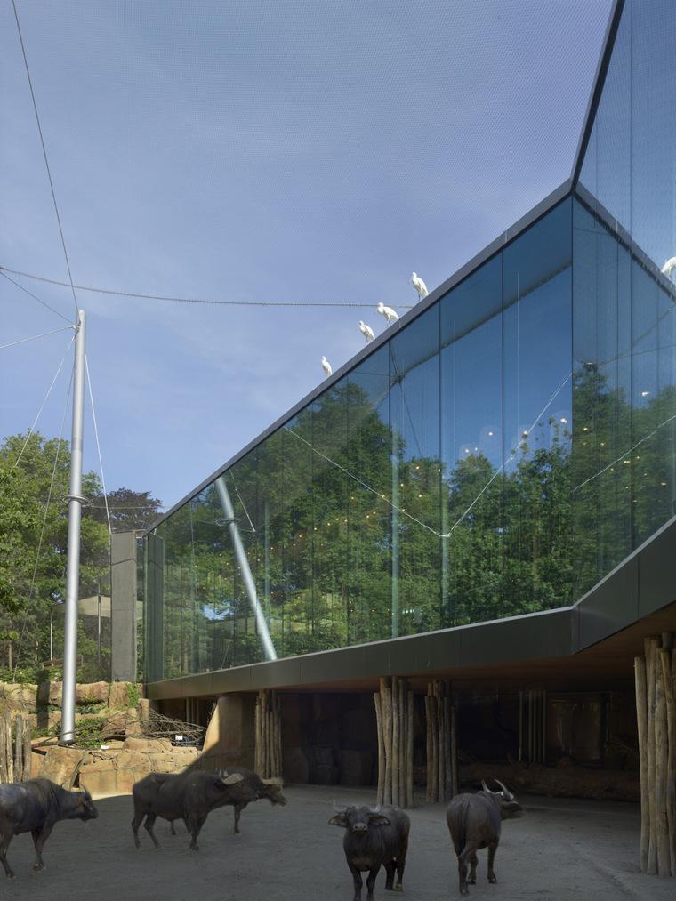 当代Antwerp动物园改建-6
