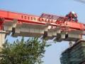 特大桥工程48m节段梁拼装施工方案(146页 附架桥机资料)
