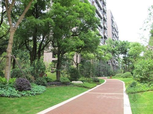 [江苏]住宅区绿化工程监理大纲143页(资料完整、参考价值高)